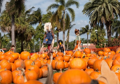 Fun Things to do this Fall in Central Florida